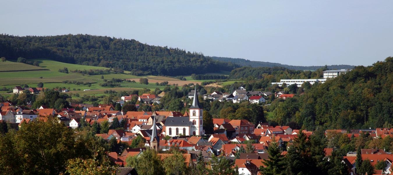Blick_auf_Reichelsheim_im_Odenwald